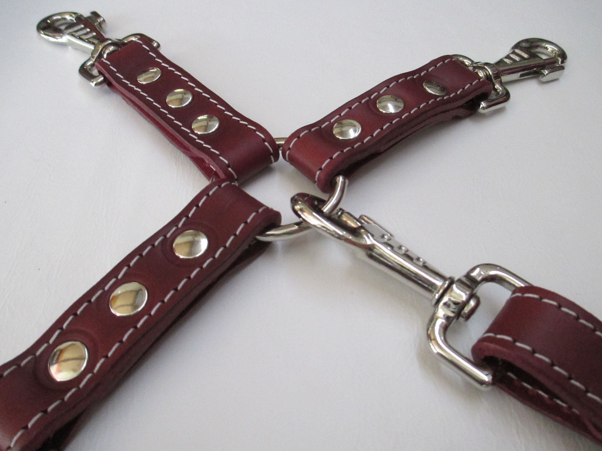 Oxblood leather 4 point, way hogtie,